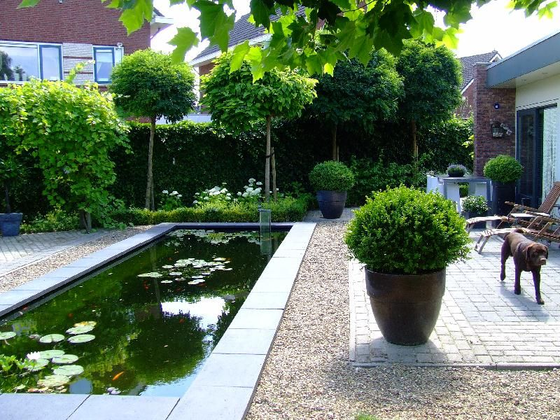 Garden Rectangular Pond Pool Water Feature Go Green Pinterest - Estanque-rectangular