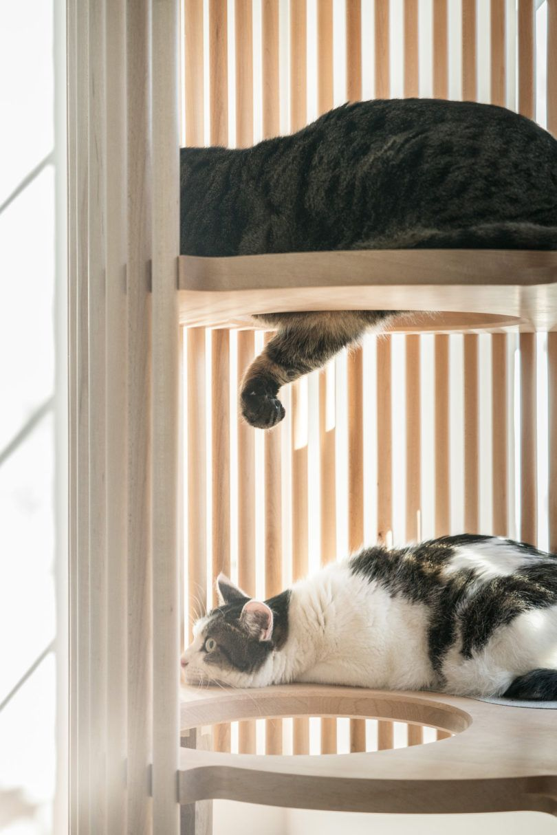 modern pet furniture. Japanese Brand RINN Launches The NEKO Cat Tree, A Modern Piece Of Furniture That Appears Sculptural While Allowing Perfect Spot For Your Cats. Pet