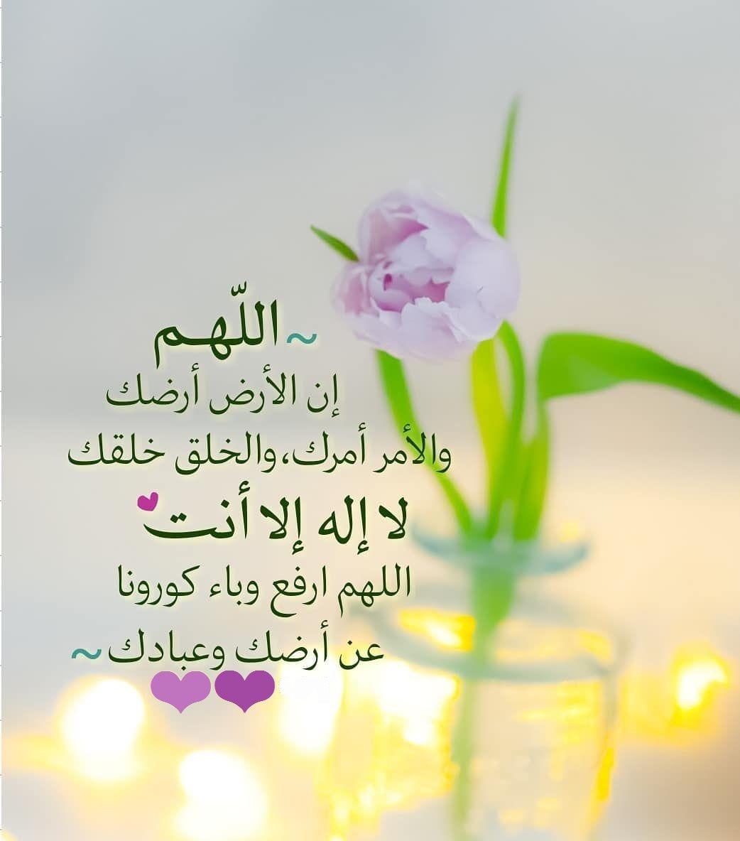 Pin By Um Raza On الصلاة على النبي صل الله عليه وسلم Islamic Images Best Islamic Images Islamic Pictures