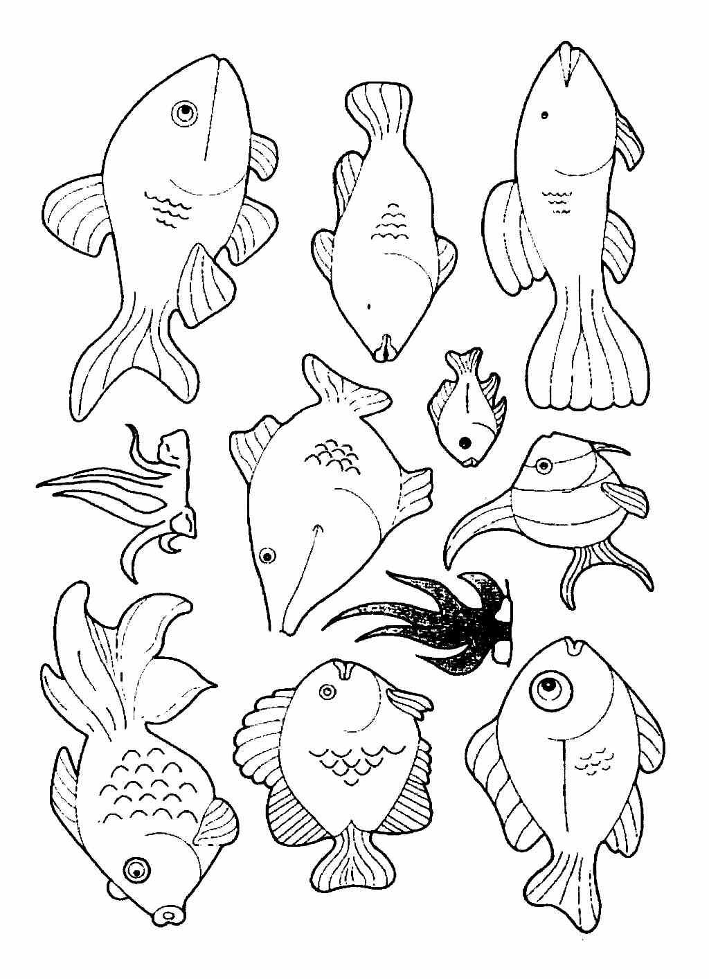 vissen tekening zoeken vissen tekenen vissen