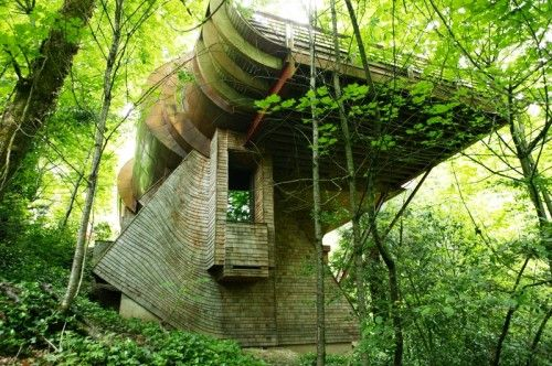 Organic architecture is the term coined by famous architect Frank ...
