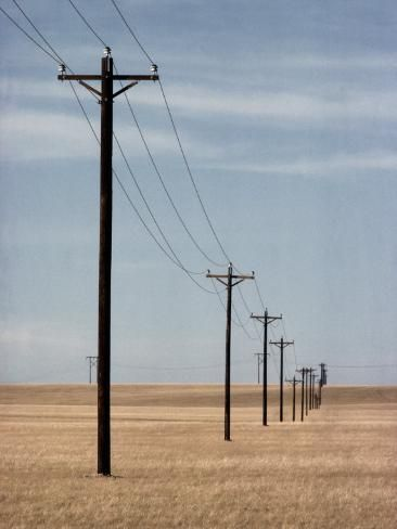 Photographic Print A Line Of Telephone Poles Traveling Over Golden Grassland By George Grall 16x12in Line Photography Pole Art Scenery