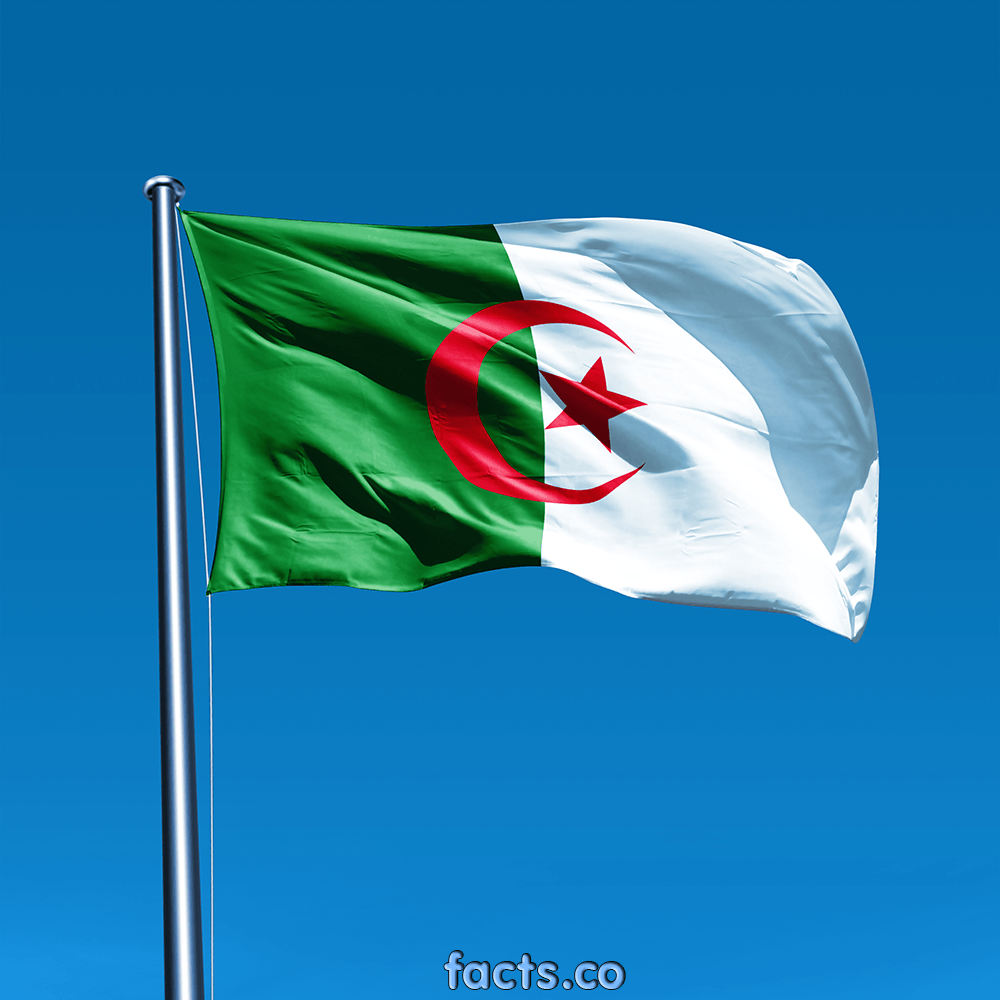 Algeria Flag All About Algeria Flag Colors Meaning Information History Algeria Flag Flags Of The World African Countries