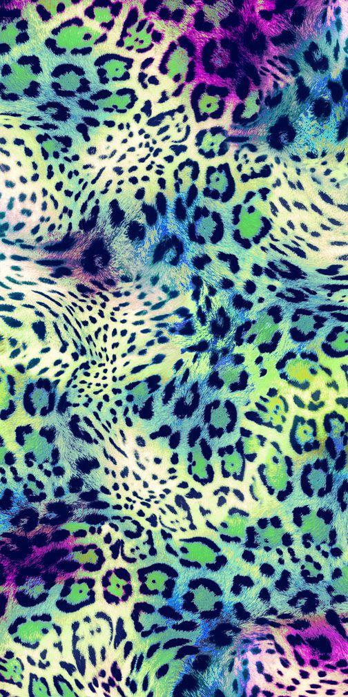Animal Print Maculato Stampe Grafiche Grafici E Sfondi