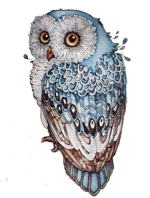 hibou plus   tatouage   pinterest   dessin chouette, hibou dessin
