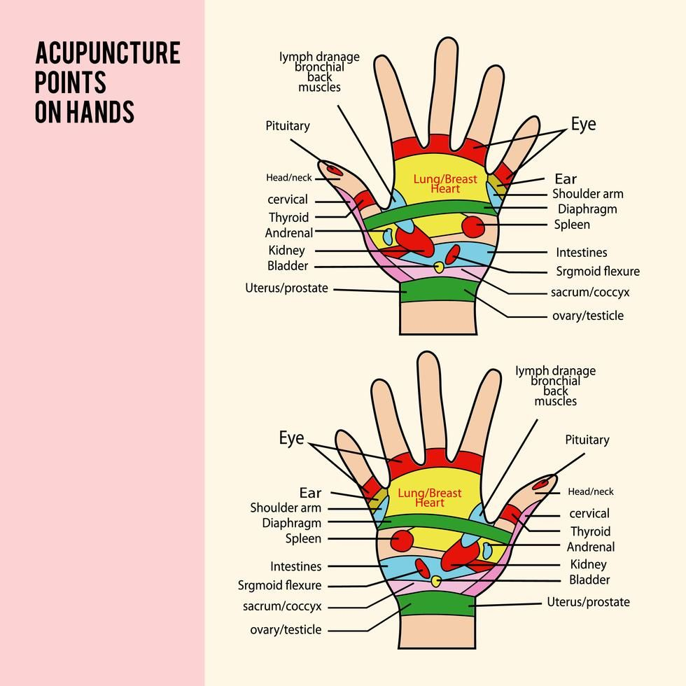 Pin by Regina Aquino on Health   Acupuncture points ...