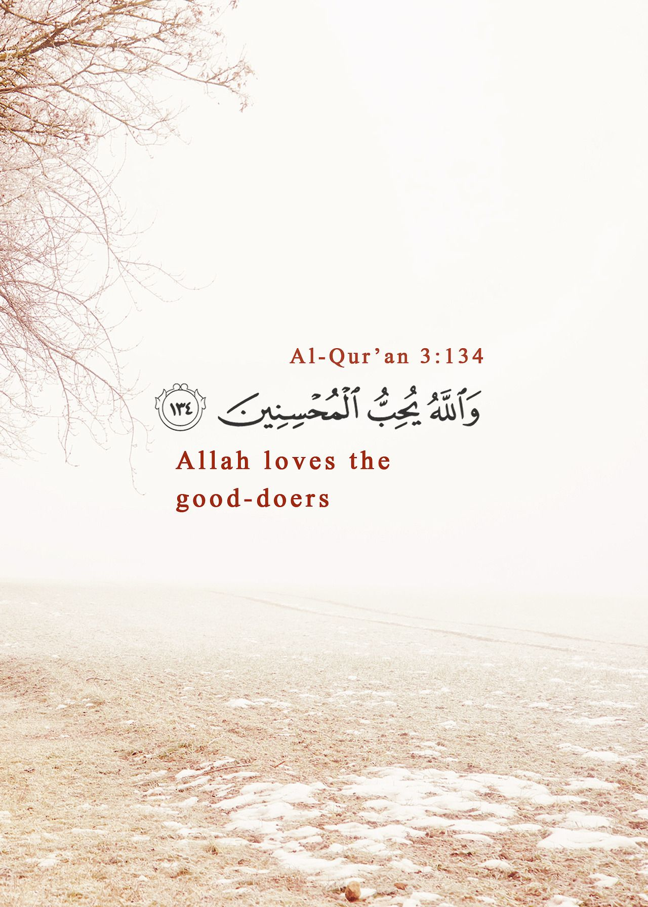 Pin By Medine Durmaz On القرآن الكريم Quran Quran Quotes Allah Love Quran Quotes Love