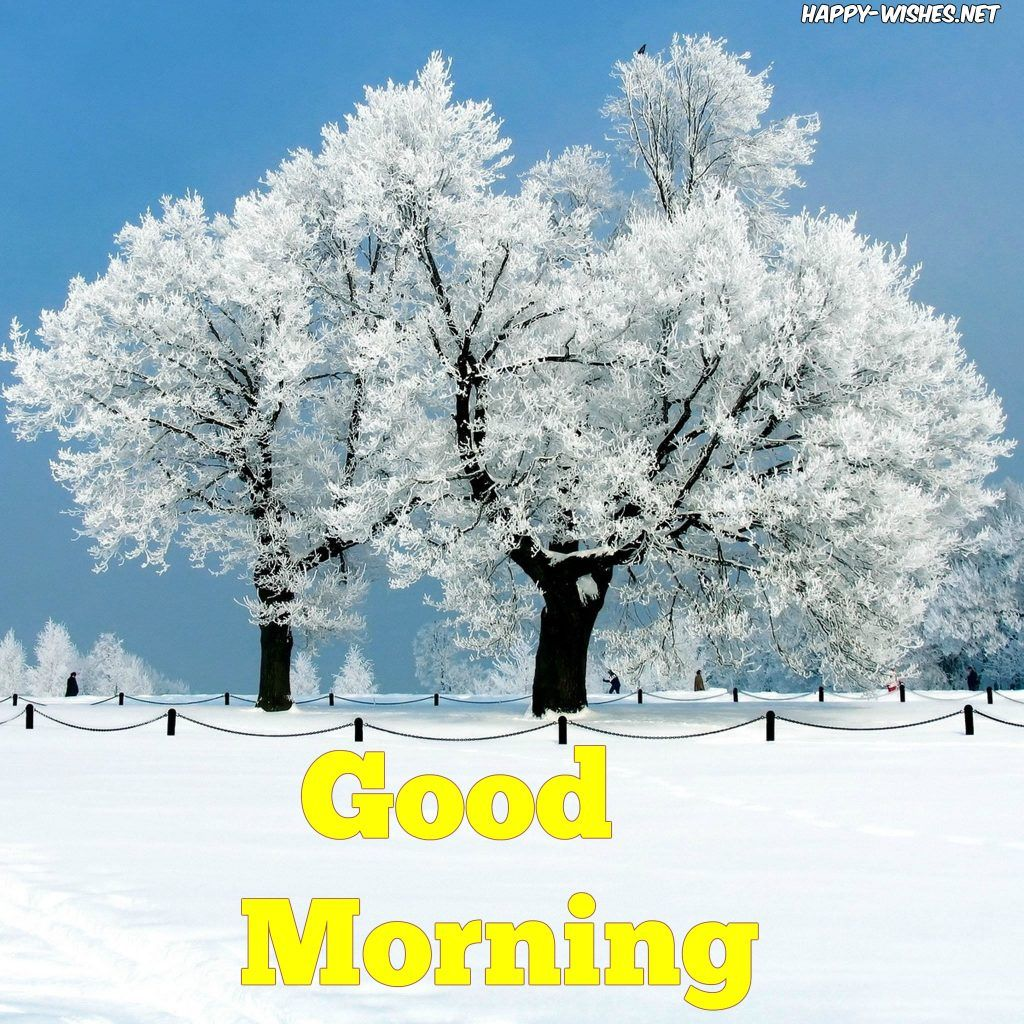 Good Morning Wishes With Snow On The Tree Images Good Morning Winter Images Good Morning Winter Good Morning