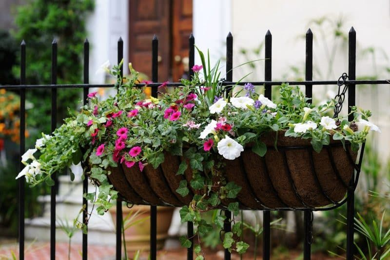 27 Gorgeous Fence Planters Hanging Potted Plants Fence Hanging