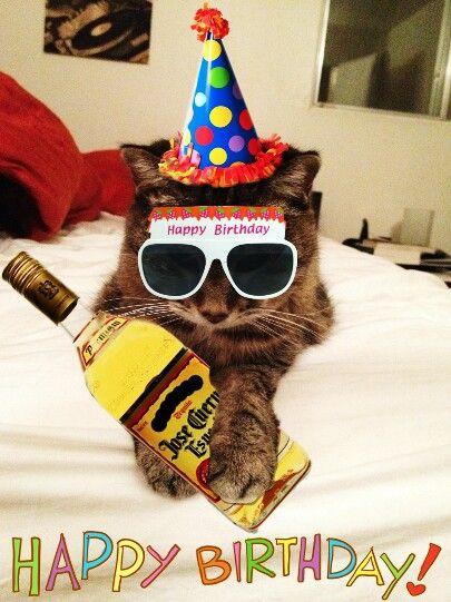 Happy Birthday Kitty With Tequila Happy Birthday Cat Cat Birthday Birthday Wishes For Women