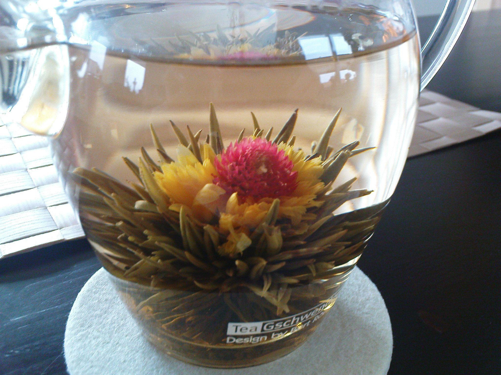 Flowering Jasmine Green Tea Beautiful Green Tea Pinterest