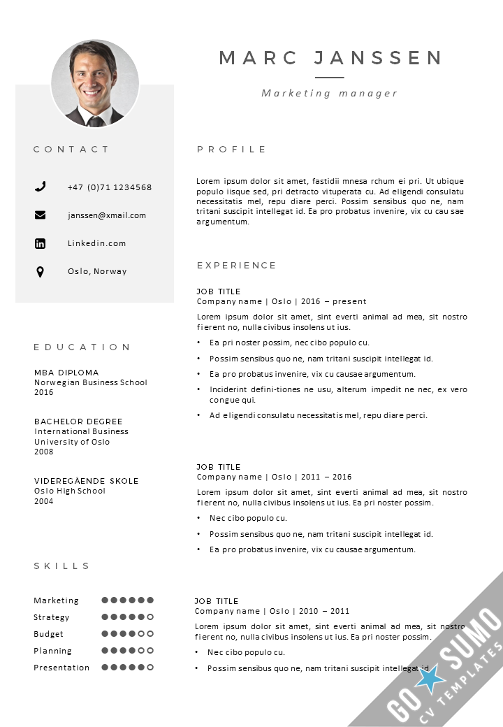 cv template oslo  with images