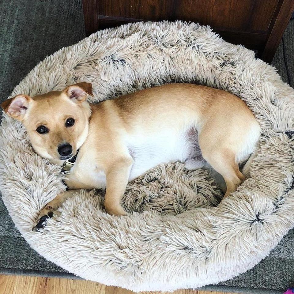 Superpawz Fluffy Bed Hondenmand