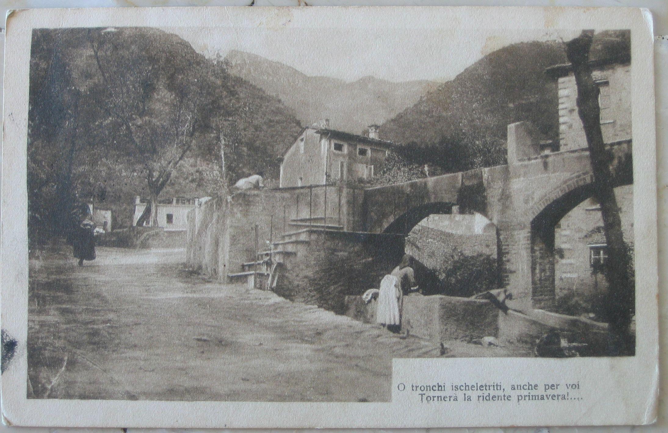 1919 Paesaggio con poesia O tronchi ischeletriti, anche per voi Tornerà la ridente primavera'... N°034 cartolina con francobollo Italia uno da 10 e uno 5 centesimi
