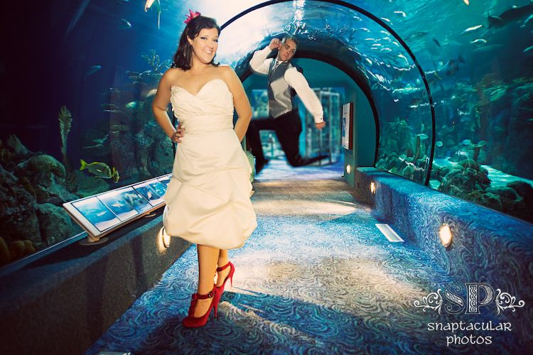 We LOVED shooting Renee and Justins wedding at the Moody Gardens
