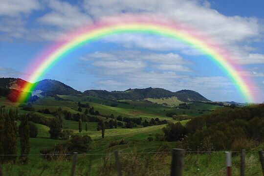 An actual rainbow | Rainbow, Quotations, Love quotes