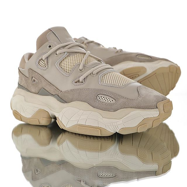 dm trainers