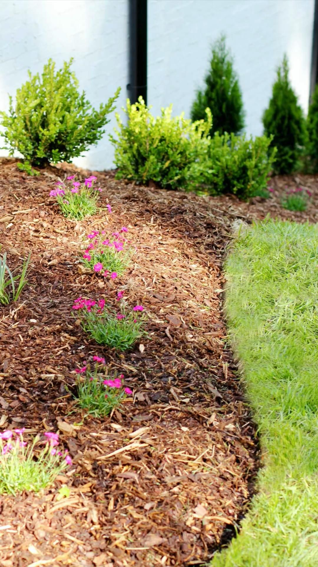 How to Edge a Flower Bed Like a Pro