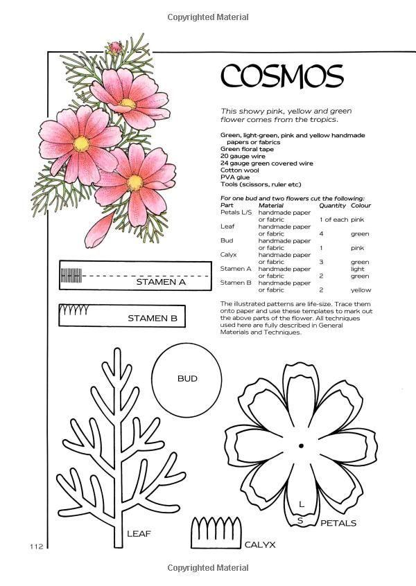 Vnaltkflmf8g 600846 pinterest flowers template vnaltkflmf8g 600846 mightylinksfo