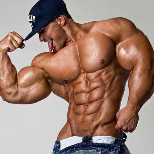 Double muscle bears bb