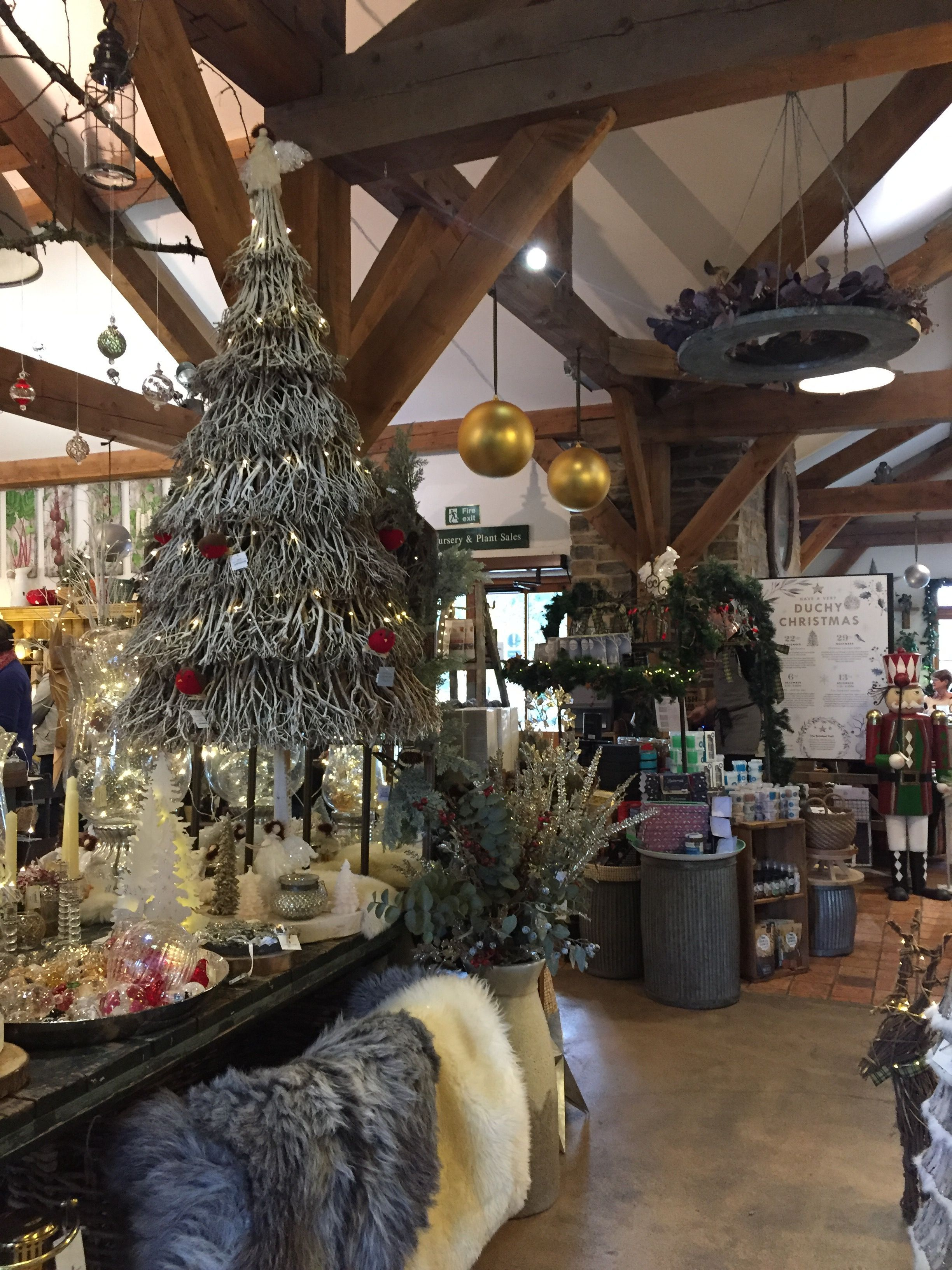 Popped to the local garden centre & it has made us feel so festive 🎅🏽 #feelingfestive #christmasiscoming #christmascountdown