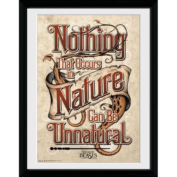 Fantastic Beasts Nature Framed Album Cover #cover #merchandise #harrypotter #collectibles [affiliate-link]