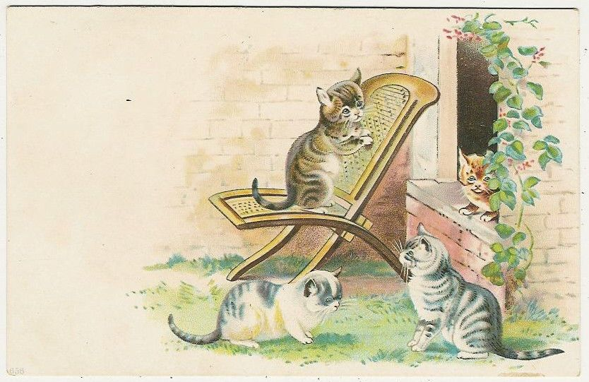 Cats Three Little Cats Playing on A Chair