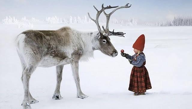 Lappi-Finland
