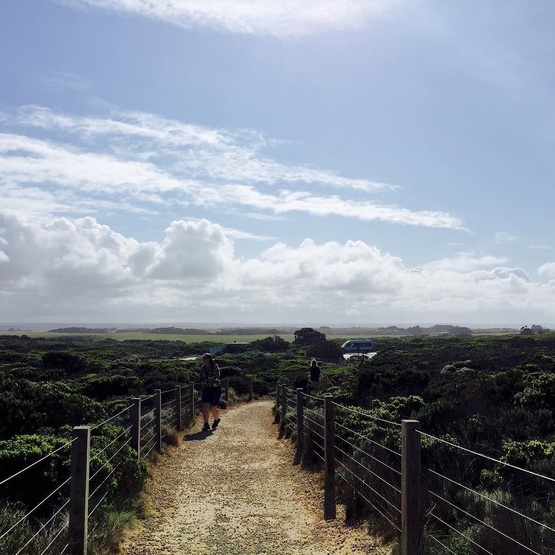 #호주 #그레이트오션로드 ㅡ 끝없는 지평선 ㅡ #grass #sky #bayofislands #coastalpark #GreatOceanRoad #victoria #aus #austrip #traveling #groovygrape #tour #yoontrip #우정여행 #호주여행 #nature #iphone6 by hayoon128