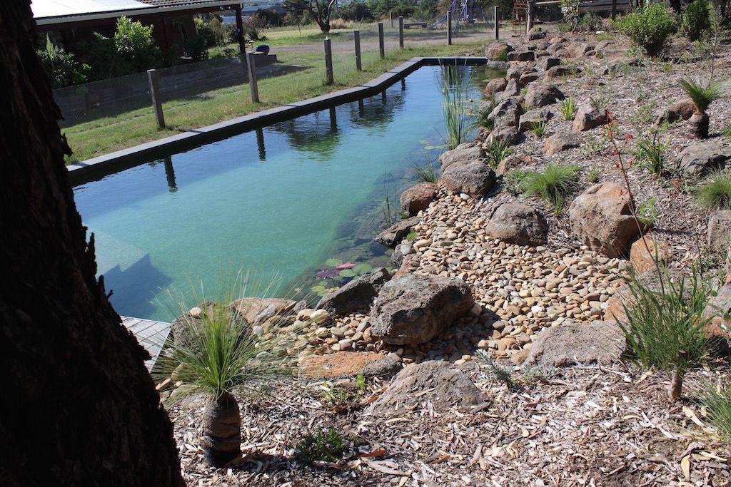 Natural Pools Australia Naturalswimpools Australia Pool Natural
