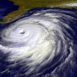 Hurricane Food Ideas! #hurricanefoodideas Hurricane Food Ideas! #hurricanefoodideas Hurricane Food Ideas! #hurricanefoodideas Hurricane Food Ideas! #hurricanefoodideas
