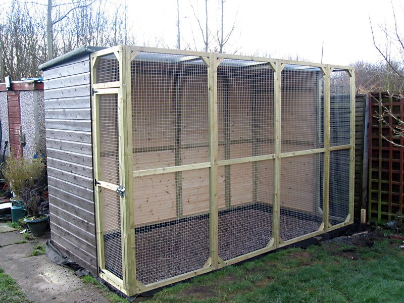 how to build an outdoor parrot aviary (With images) Bird