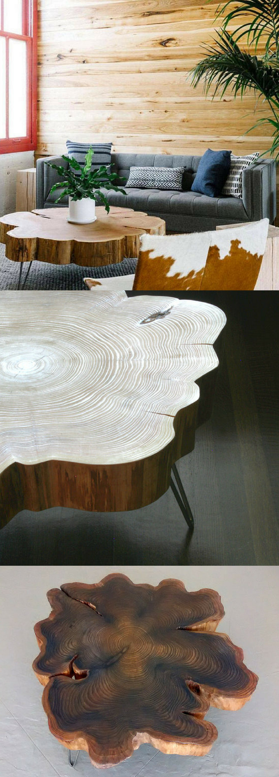 Amazing Live Edge Coffee Table With Mid Century Hairpin Legs