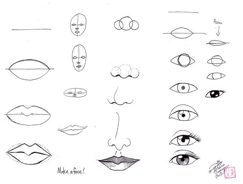 How To Draw Face Parts Face Drawing Nose Drawing Drawings