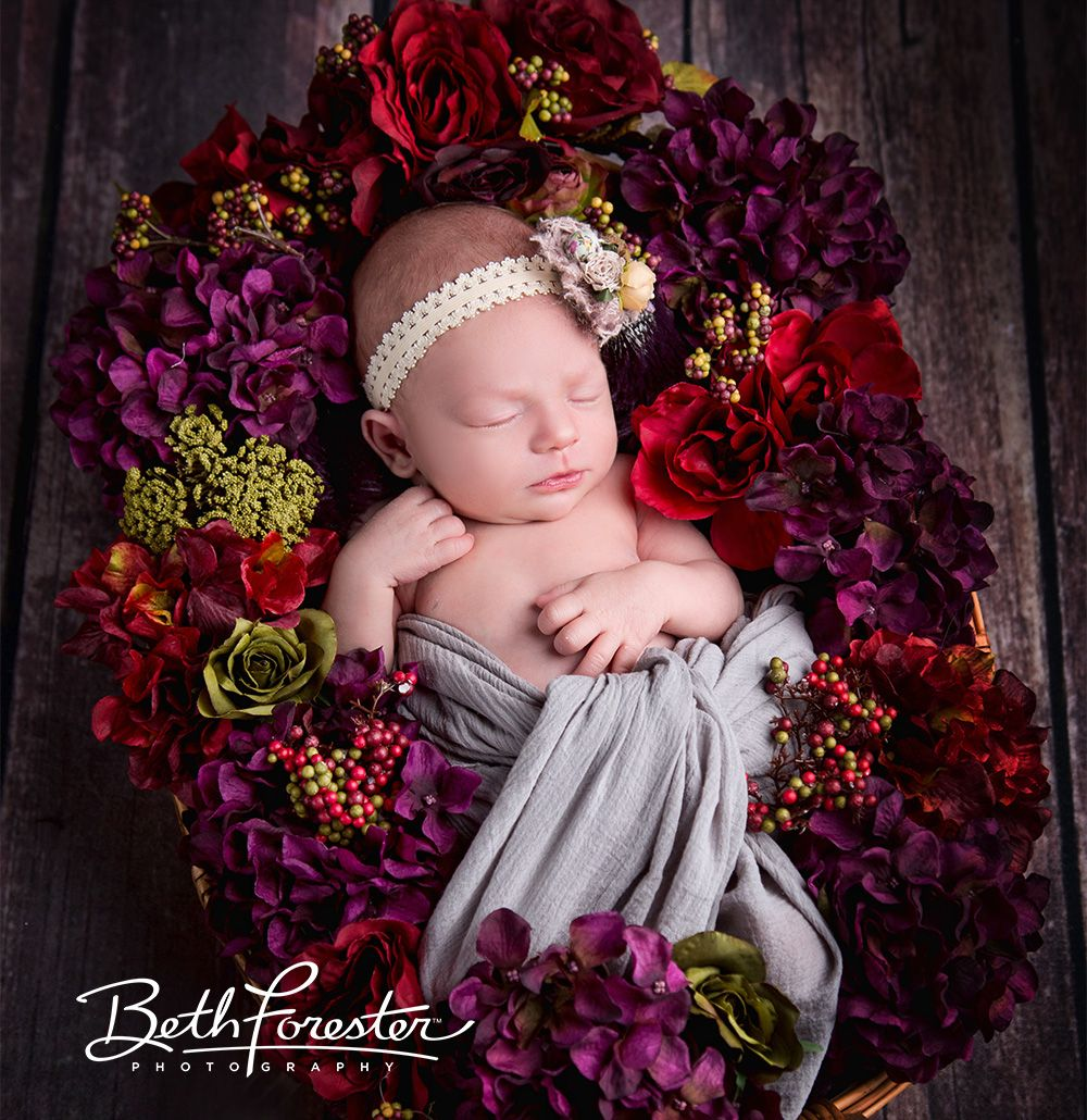 Newborn Baby In A Basket Of Flowers