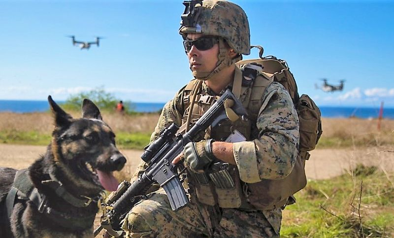 It is not always easy to match a Military Working Dog and