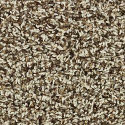 Shaw Savannah Frieze Carpet 12ft Wide Model Number