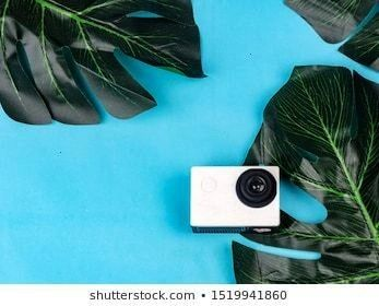 camera with natural leaves camera polaroid of tea leaf beach background on white background background leaf cup partyAction camera with natural leaves camera polaroid of...