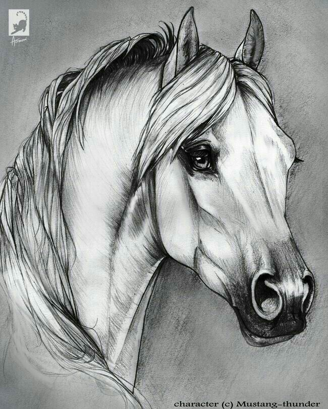 Pin By Cherie On Art In 2018 Dessin Cheval Dessin Peinture