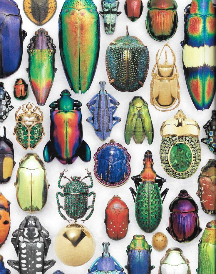 Photo of Editorial: Beetlemania-Harper's Bazaar US-November 2018-New Ideas