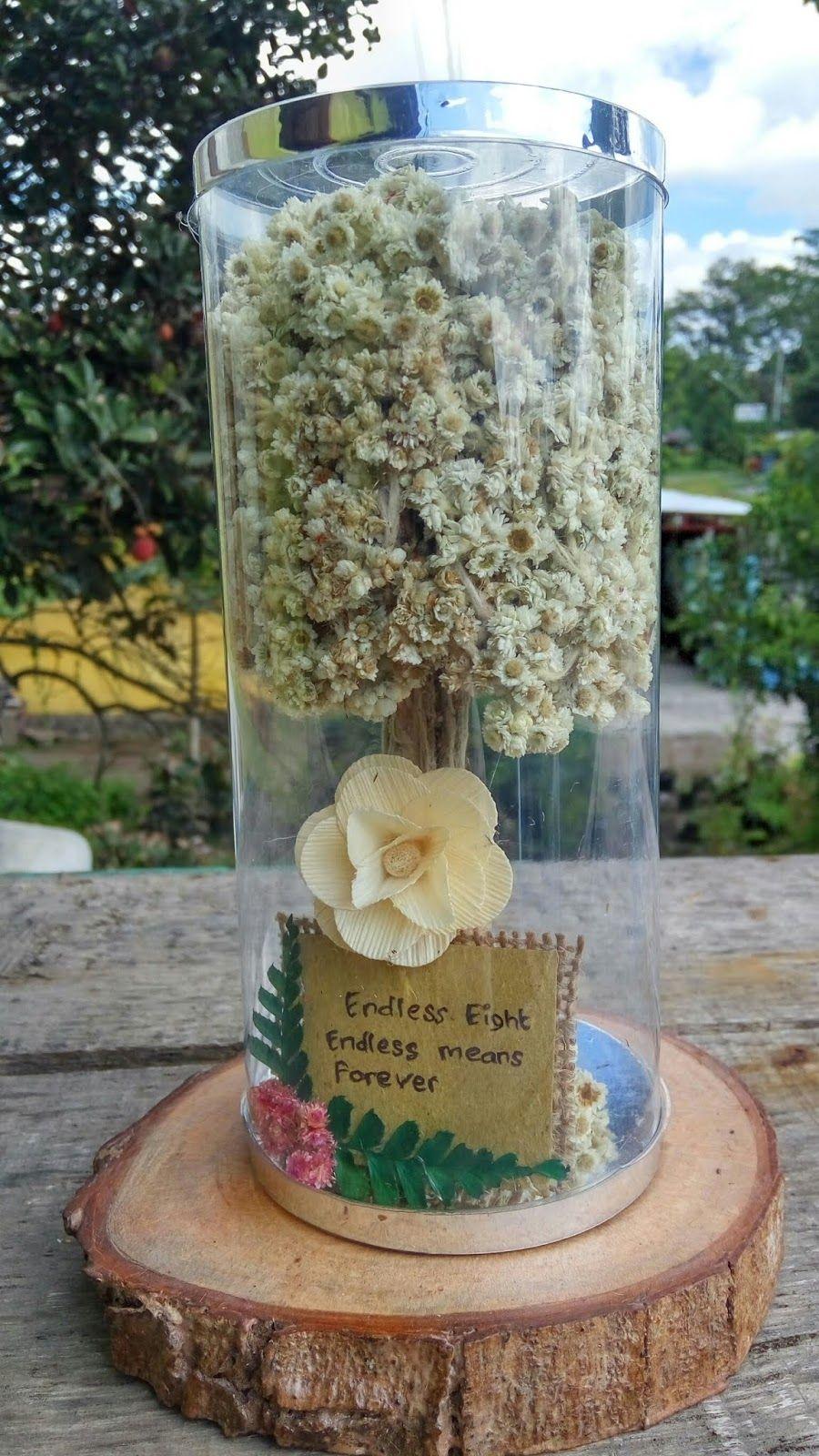 Bunga Edelweis Bunga Abadi Tipe Kado Unik Bunga Edelweis Tabung Bunga Abadi Cocok Sebagai Kado Unik Untuk Pasangan Atau Sahabat Bunga Ulang Tahun Ide Hadiah