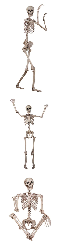 Plastic Action Games 165969: Life Size Skeleton Human Skull Bone ...