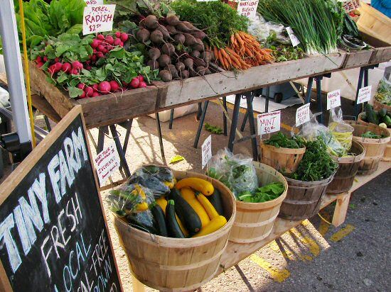 Allows for great visibility of produce, increasing sales opportunity. Simple and cost efficient design, that is transportable if need be. Use of reclaimed wood will increase environmentally friendly design.