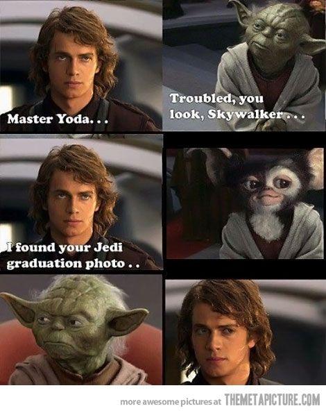 Yoda S Graduation Photo Star Wars Humor Funny Star Wars Memes Star Wars Memes