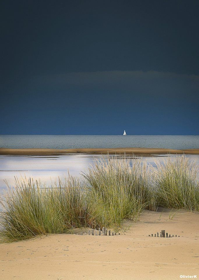 Mikael S Playground Photo Beach Scenes Landscape Nature Photography