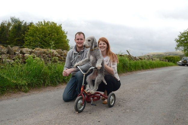 Barry's owners, Wayne Sowerby and Kate Hayllar, from Cumbria, said they first put their pet on a skateboard when he was a puppy.   Nothing To See Here, Just A Dog Riding His Bike Like A Complete Boss