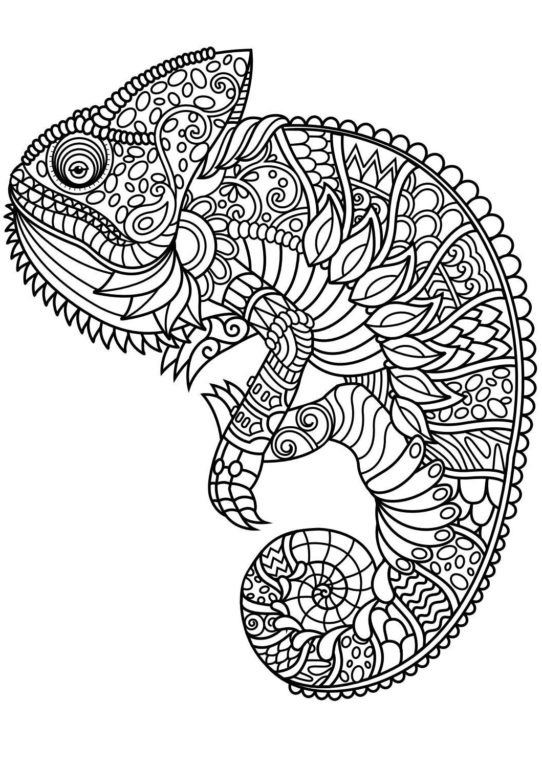 Adult Animal Coloring Book DCP4 Animal Coloring Pages Pdf ...