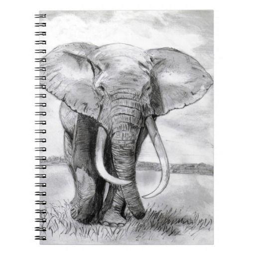 Dibujos De Elefantes A Lapiz Buscar Con Google Elephant Drawing Elephant Head Drawing Pencil Drawings Of Girls