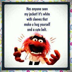 Beaker muppets quotes google zoeken funny pinterest humour beaker muppets quotes google zoeken voltagebd Images