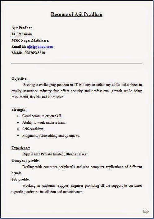 It Support Engineer Sample Resume Delectable Good Resume Writing Sample Template Example Of Excellentcv  Resume .